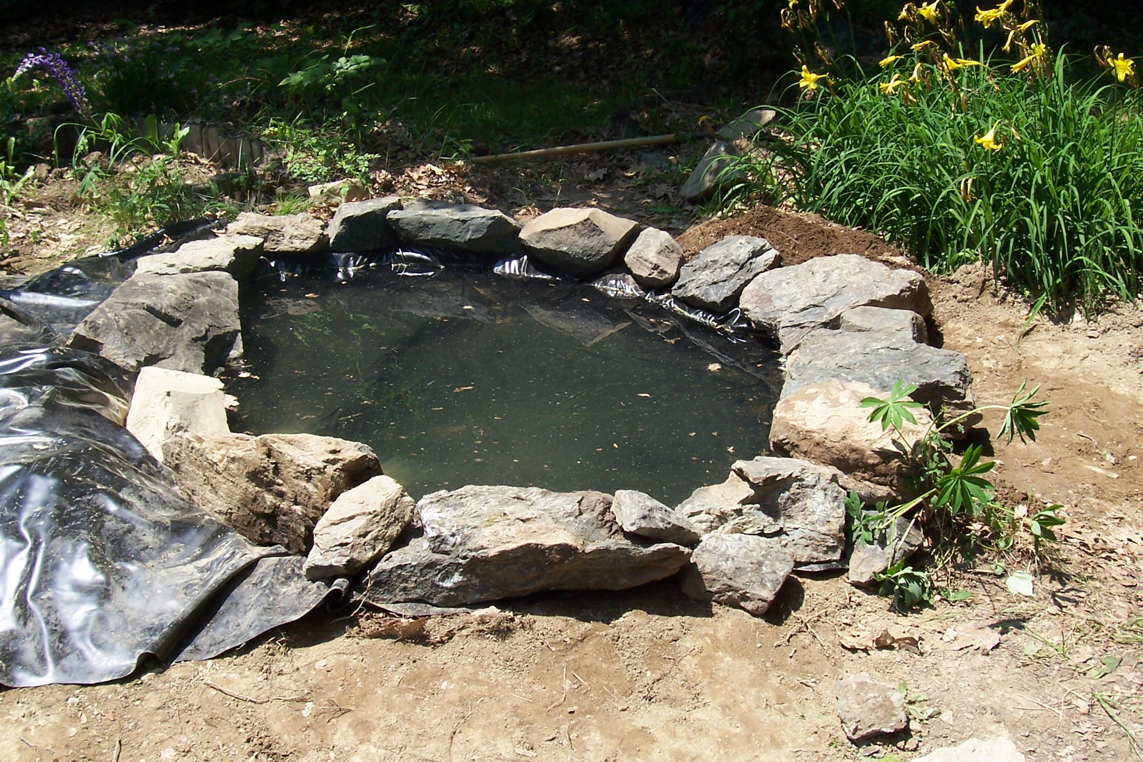 too cute tuesday backyard water feature breaking even